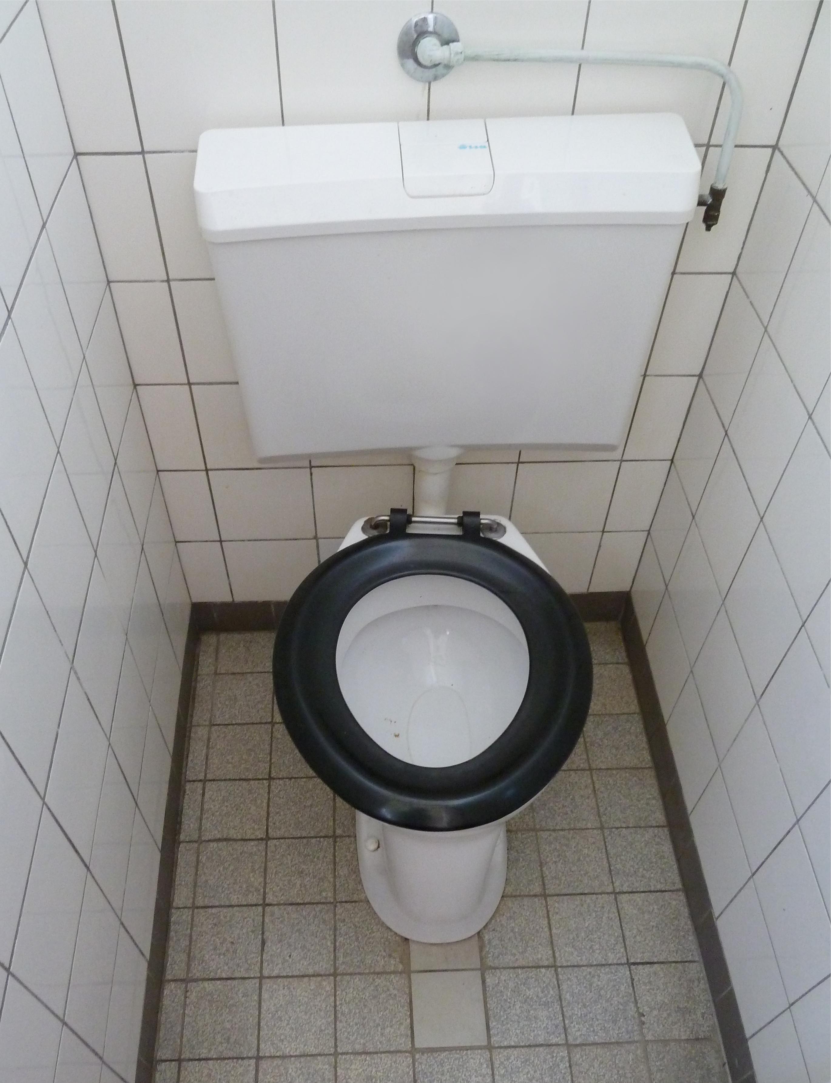 toilet erin schoolergonomie. Black Bedroom Furniture Sets. Home Design Ideas